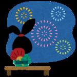 川崎市制記念多摩川花火大会2019混雑状況やアクセス?有料席の値段や購入方法は?